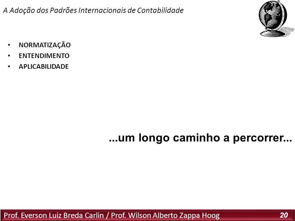 Prof. Everson Luiz Breda Carlin / Prof. Wilson Alberto Zappa Hoog 20 NORMATIZAÇÃO ENTENDIMENTO APLICABILIDADE A Adoção dos Padrões Internacionais de C