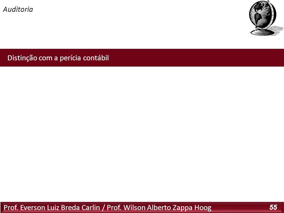 Prof. Everson Luiz Breda Carlin / Prof. Wilson Alberto Zappa Hoog 55 Distinção com a perícia contábil
