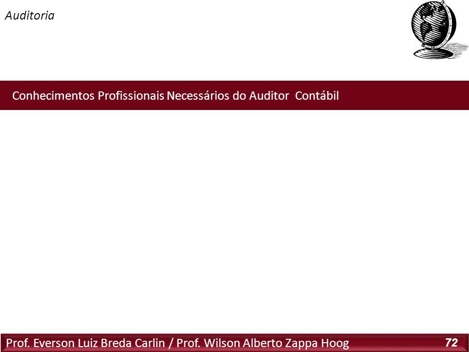 Prof. Everson Luiz Breda Carlin / Prof. Wilson Alberto Zappa Hoog 72 Conhecimentos Profissionais Necessários do Auditor Contábil