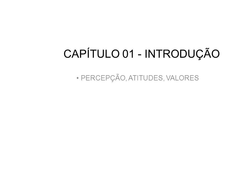 CAPÍTULO 01 - INTRODUÇÃO PERCEPÇÃO, ATITUDES, VALORES