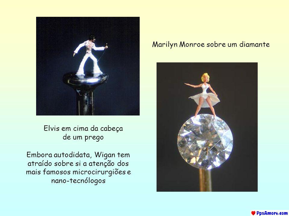 Elvis em cima da cabeça de um prego Marilyn Monroe sobre um diamante Embora autodidata, Wigan tem atraído sobre si a atenção dos mais famosos microcirurgiões e nano-tecnólogos