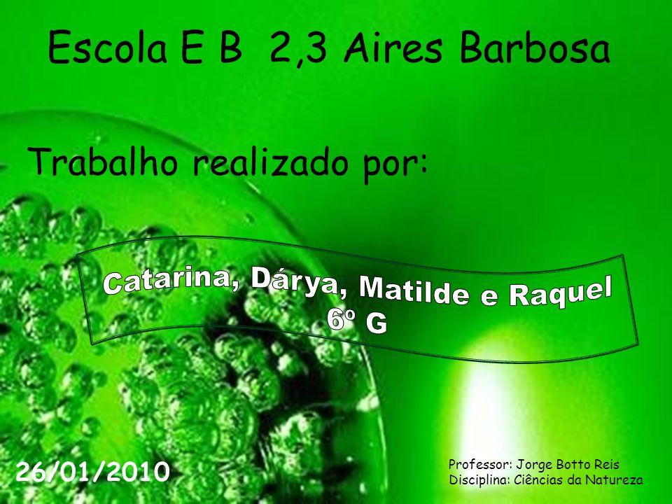 Escola E B 2,3 Aires Barbosa Trabalho realizado por: 26/01/2010 Professor: Jorge Botto Reis Disciplina: Ciências da Natureza