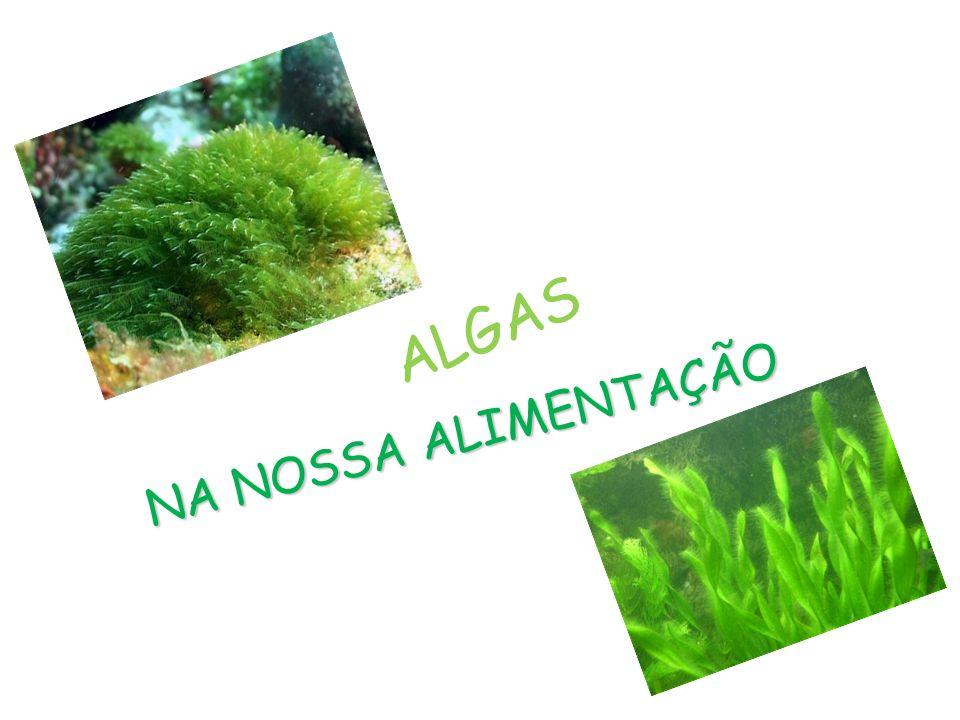 INTRODUÇÃO Ciências da Natureza Estamos a fazer este trabalho no âmbito da disciplina de Ciências da Natureza com o título As algas na nossa alimentação Neste trabalho nós gostaríamos de descobrir como são introduzidas as algas na nossa alimentação.