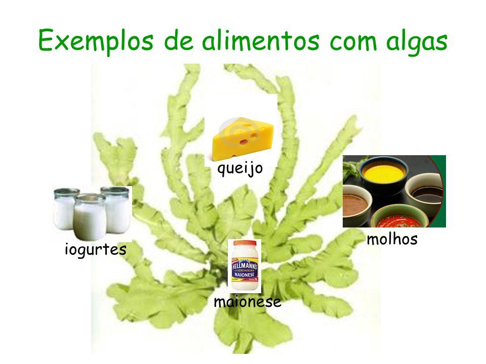 Exemplos de alimentos com algas iogurtes maionese molhos queijo