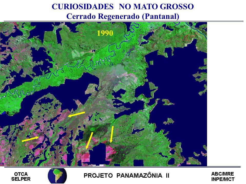CURIOSIDADES NO MATO GROSSO Cerrado Regenerado (Pantanal) 1990