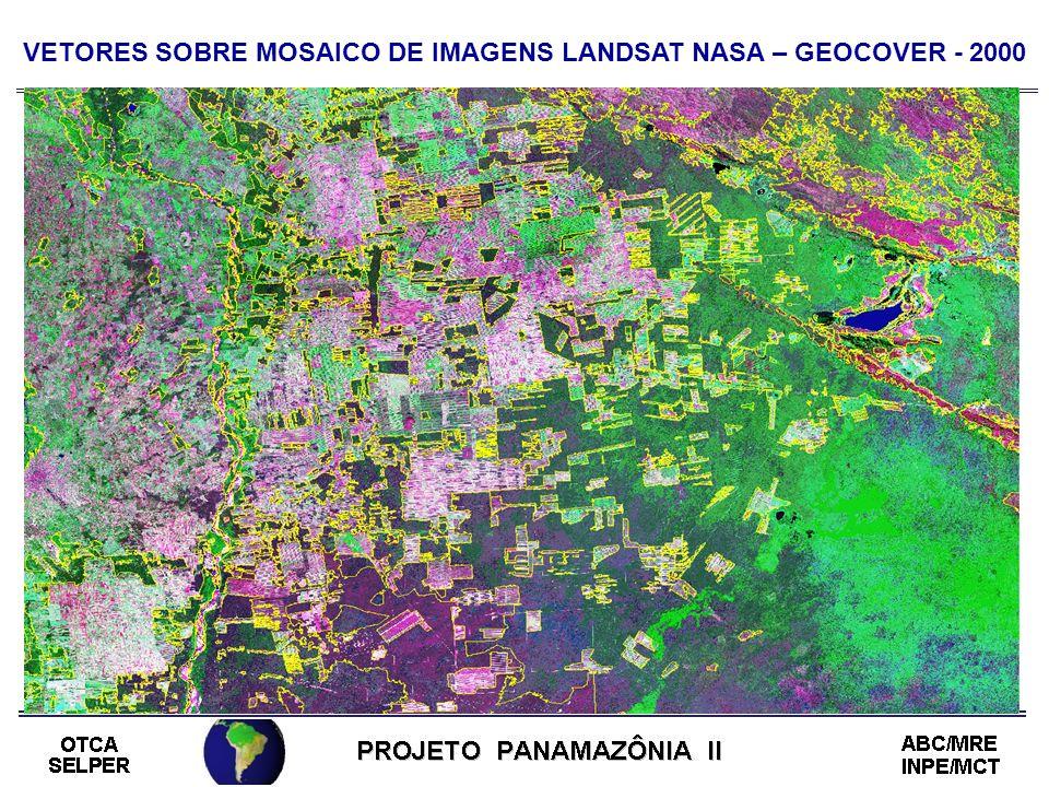 VETORES SOBRE MOSAICO DE IMAGENS LANDSAT NASA – GEOCOVER - 2000