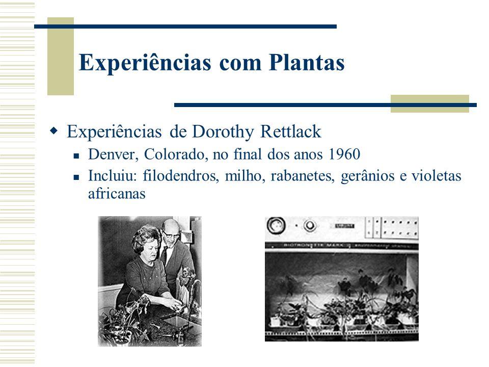 Experiências com Plantas Experiências de Dorothy Rettlack Denver, Colorado, no final dos anos 1960 Incluiu: filodendros, milho, rabanetes, gerânios e violetas africanas