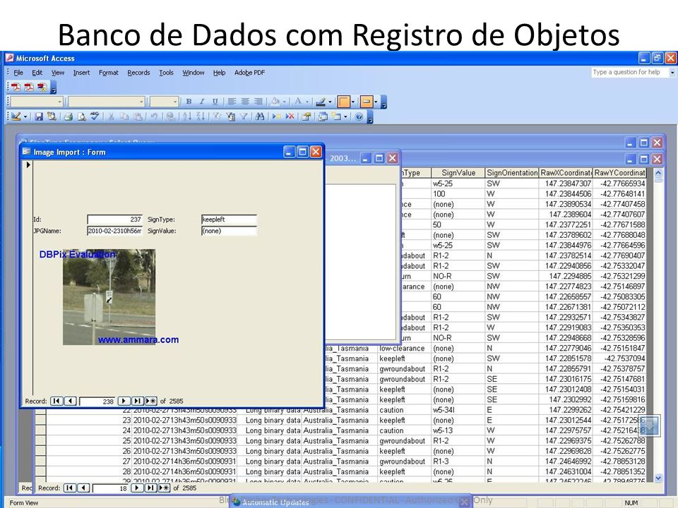 Banco de Dados com Registro de Objetos Blue Dasher Technologies - CONFIDENTIAL - Authorized Use Only