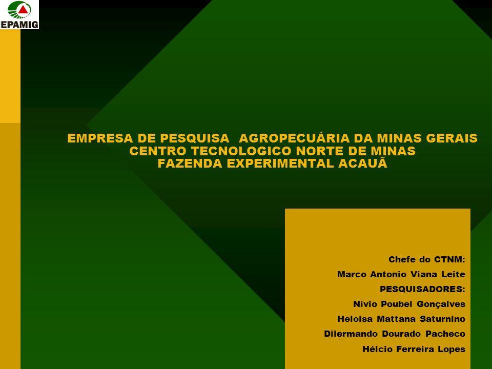 EMPRESA DE PESQUISA AGROPECUÁRIA DA MINAS GERAIS CENTRO TECNOLOGICO NORTE DE MINAS FAZENDA EXPERIMENTAL ACAUÃ Chefe do CTNM: Marco Antonio Viana Leite