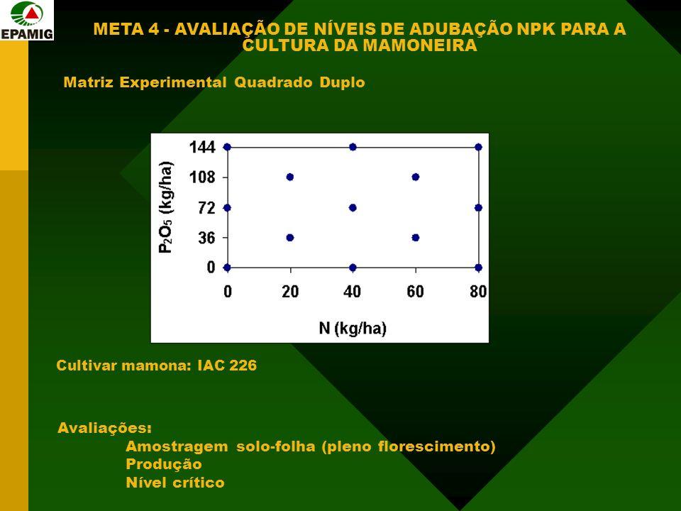 Matriz Experimental Quadrado Duplo Cultivar mamona: IAC 226 Avaliações: Amostragem solo-folha (pleno florescimento) Produção Nível crítico META 4 - AVALIAÇÃO DE NÍVEIS DE ADUBAÇÃO NPK PARA A CULTURA DA MAMONEIRA