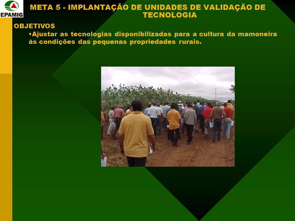 META 5 - IMPLANTAÇÃO DE UNIDADES DE VALIDAÇÃO DE TECNOLOGIA OBJETIVOS Ajustar as tecnologias disponibilizadas para a cultura da mamoneira às condições das pequenas propriedades rurais.