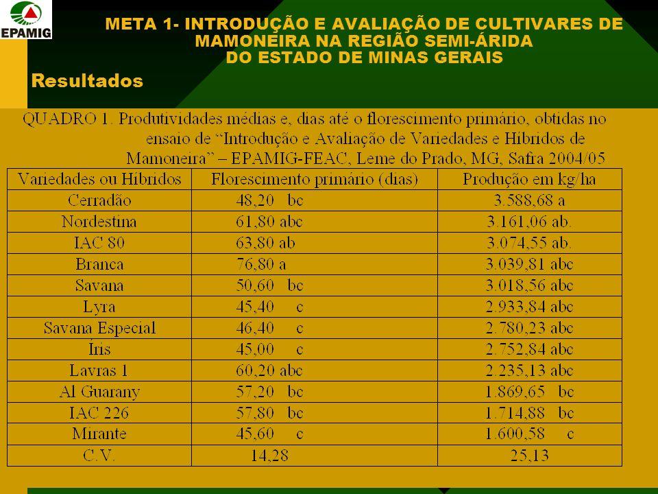META 1- INTRODUÇÃO E AVALIAÇÃO DE CULTIVARES DE MAMONEIRA NA REGIÃO SEMI-ÁRIDA DO ESTADO DE MINAS GERAIS Resultados