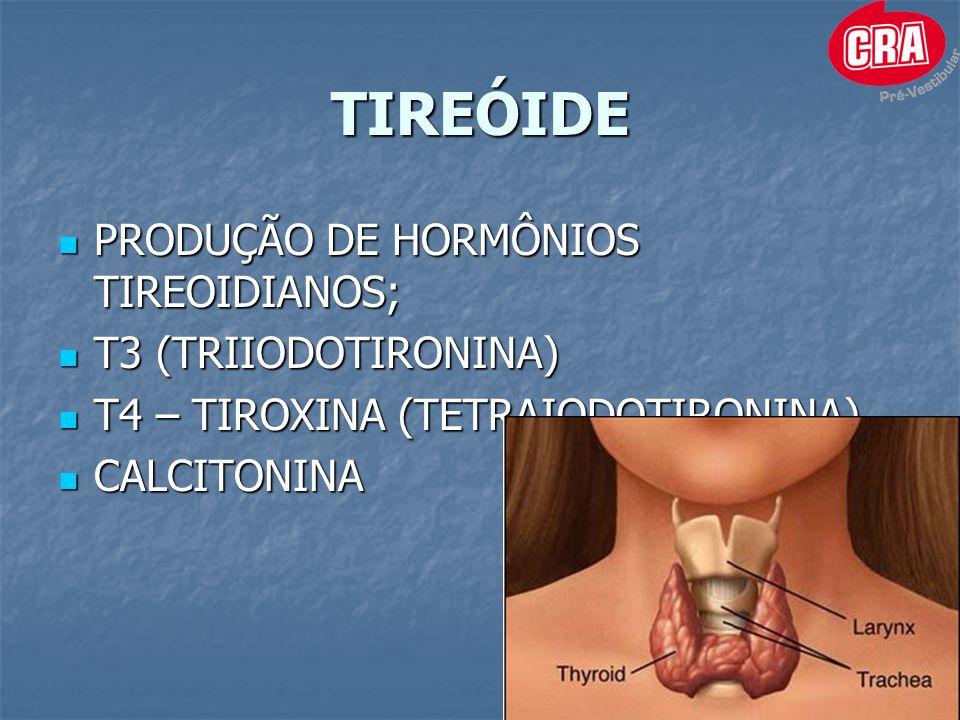 TIREÓIDE PRODUÇÃO DE HORMÔNIOS TIREOIDIANOS; PRODUÇÃO DE HORMÔNIOS TIREOIDIANOS; T3 (TRIIODOTIRONINA) T3 (TRIIODOTIRONINA) T4 – TIROXINA (TETRAIODOTIRONINA) T4 – TIROXINA (TETRAIODOTIRONINA) CALCITONINA CALCITONINA