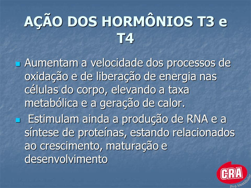 AÇÃO DOS HORMÔNIOS T3 e T4 Aumentam a velocidade dos processos de oxidação e de liberação de energia nas células do corpo, elevando a taxa metabólica e a geração de calor.