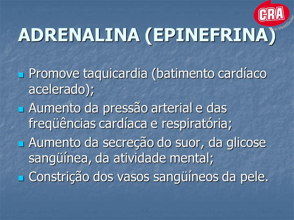 ADRENALINA (EPINEFRINA) Promove taquicardia (batimento cardíaco acelerado); Promove taquicardia (batimento cardíaco acelerado); Aumento da pressão arterial e das freqüências cardíaca e respiratória; Aumento da pressão arterial e das freqüências cardíaca e respiratória; Aumento da secreção do suor, da glicose sangüínea, da atividade mental; Aumento da secreção do suor, da glicose sangüínea, da atividade mental; Constrição dos vasos sangüíneos da pele.
