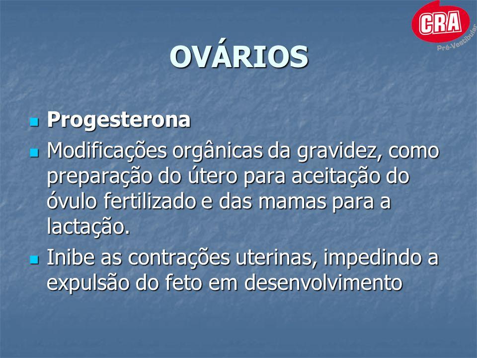 OVÁRIOS Progesterona Progesterona Modificações orgânicas da gravidez, como preparação do útero para aceitação do óvulo fertilizado e das mamas para a lactação.