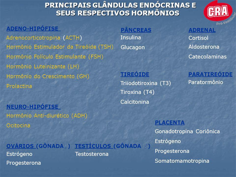 PRINCIPAIS GLÂNDULAS ENDÓCRINAS E SEUS RESPECTIVOS HORMÔNIOS SEUS RESPECTIVOS HORMÔNIOS ADENO-HIPÓFISE Prolactina Hormônio do Crescimento (GH) Adrenocorticotropina (ACTH) Hormônio Estimulador da Tireóide (TSH) Hormônio Folículo Estimulante (FSH) Hormônio Luteinizante (LH) NEURO-HIPÓFISE Hormônio Anti-diurético (ADH) Ocitocina ADRENAL Cortisol Aldosterona Catecolaminas TIREÓIDE Tiroxina (T4) Triiodotiroxina (T3) Calcitonina PARATIREÓIDE Paratormônio PÂNCREAS Insulina Glucagon OVÁRIOS (GÔNADA ) Estrógeno Progesterona TESTÍCULOS (GÔNADA ) Testosterona PLACENTA Gonadotropina Coriônica Estrógeno Progesterona Somatomamotropina