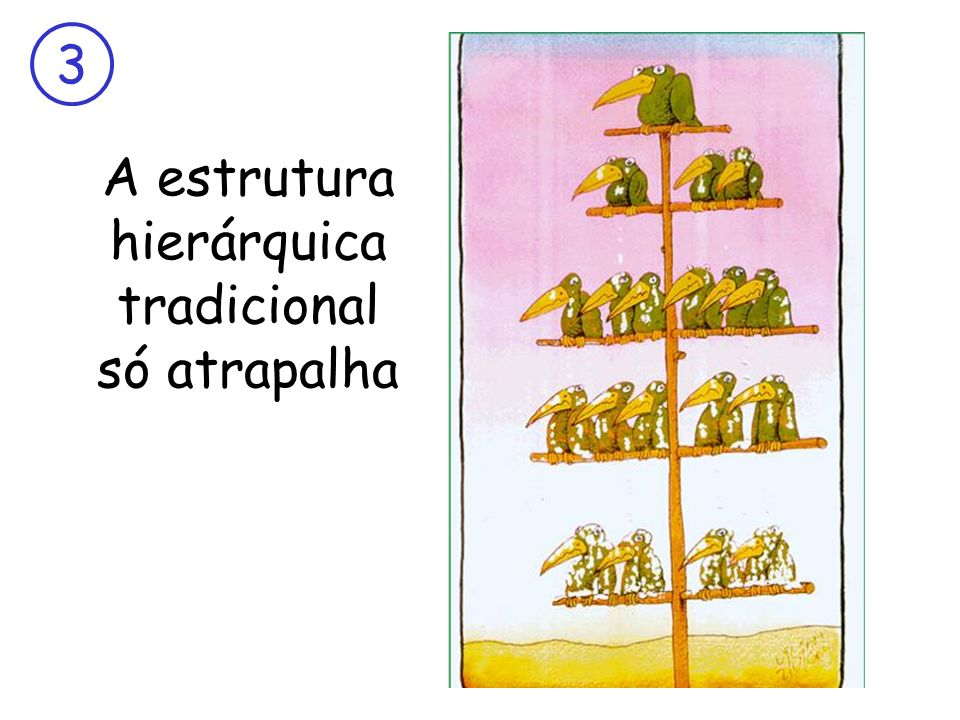 3 A estrutura hierárquica tradicional só atrapalha