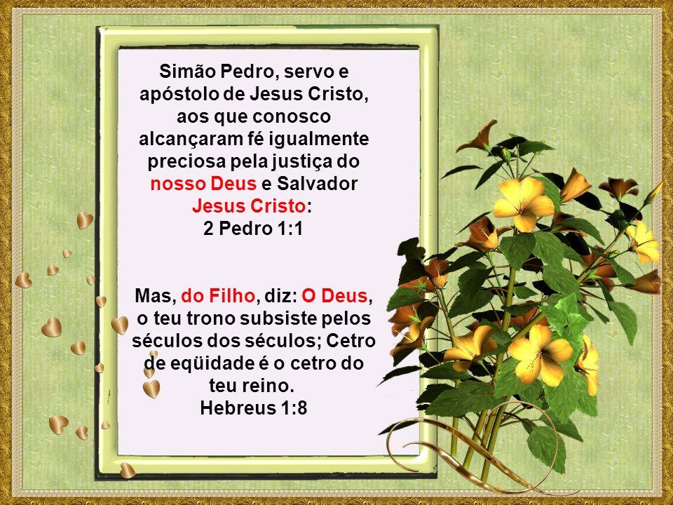 Simão Pedro, servo e apóstolo de Jesus Cristo, aos que conosco alcançaram fé igualmente preciosa pela justiça do nosso Deus e Salvador Jesus Cristo: 2