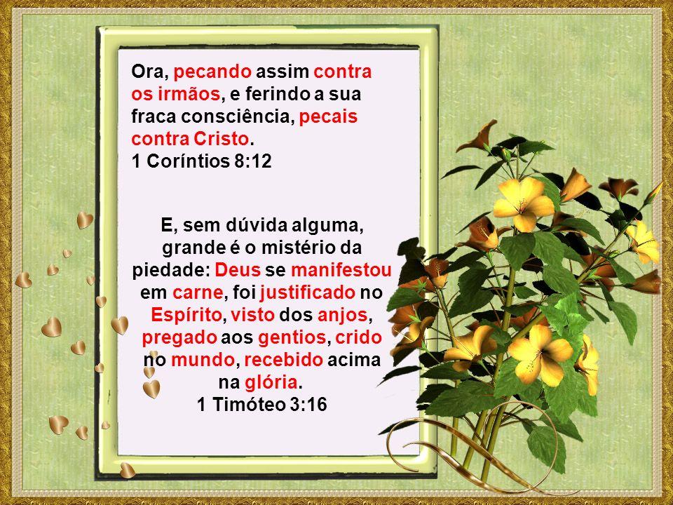 Ora, pecando assim contra os irmãos, e ferindo a sua fraca consciência, pecais contra Cristo. 1 Coríntios 8:12 E, sem dúvida alguma, grande é o mistér