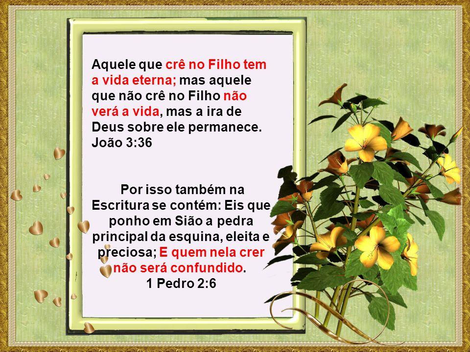 Aquele que crê no Filho tem a vida eterna; mas aquele que não crê no Filho não verá a vida, mas a ira de Deus sobre ele permanece.