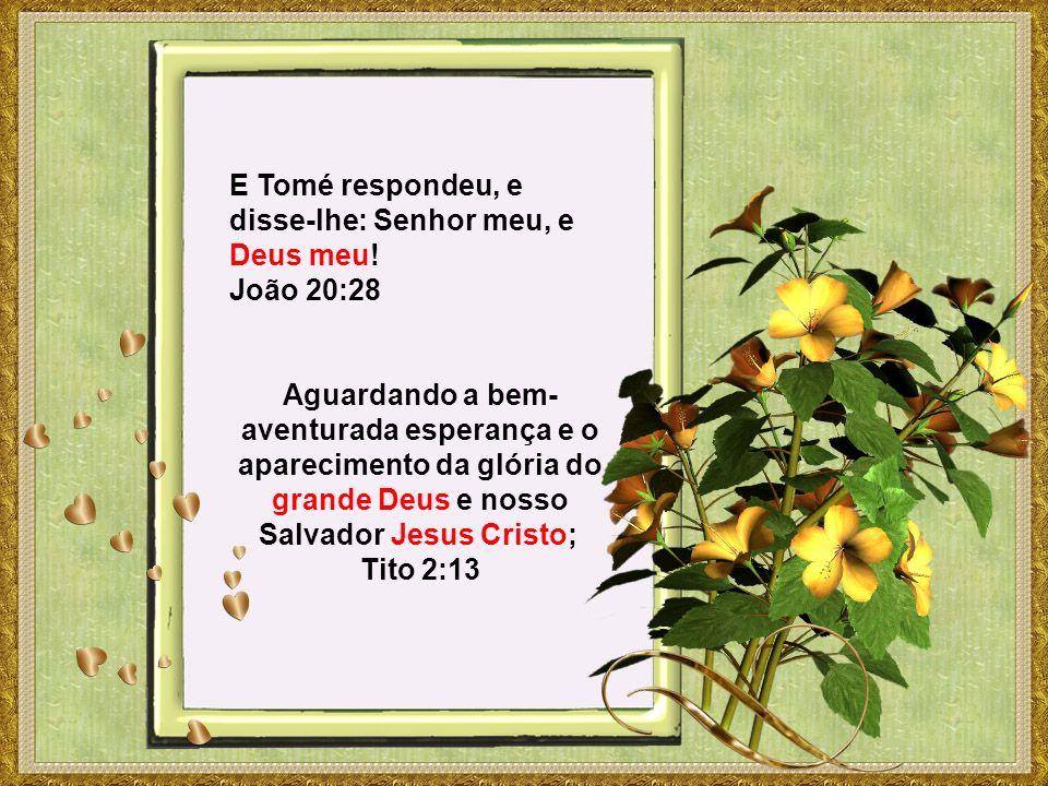 E Tomé respondeu, e disse-lhe: Senhor meu, e Deus meu! João 20:28 Aguardando a bem- aventurada esperança e o aparecimento da glória do grande Deus e n