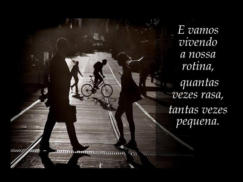 Só os pássaros voam, e os anjos, e os homens quando sonham, mas em sonhos não há firmeza. José Saramago