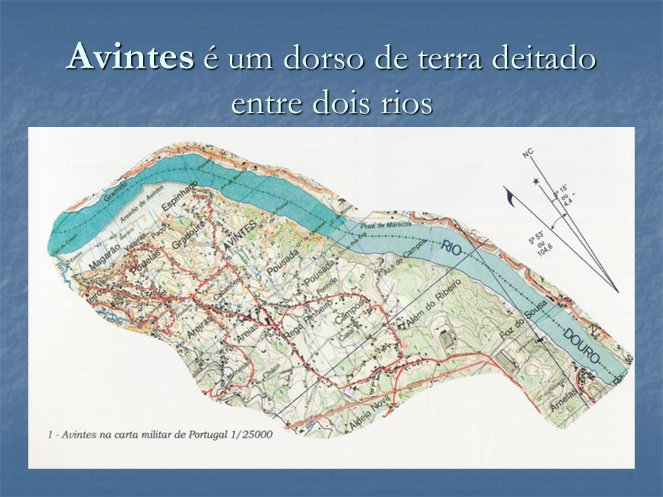 Desde a Alta Idade Média até ao fim do século XVII, Avintes terá sido uma pequena e insignificante aldeia de características rurais e piscatórias, tutelada e tributária de senhores religiosos e civis.