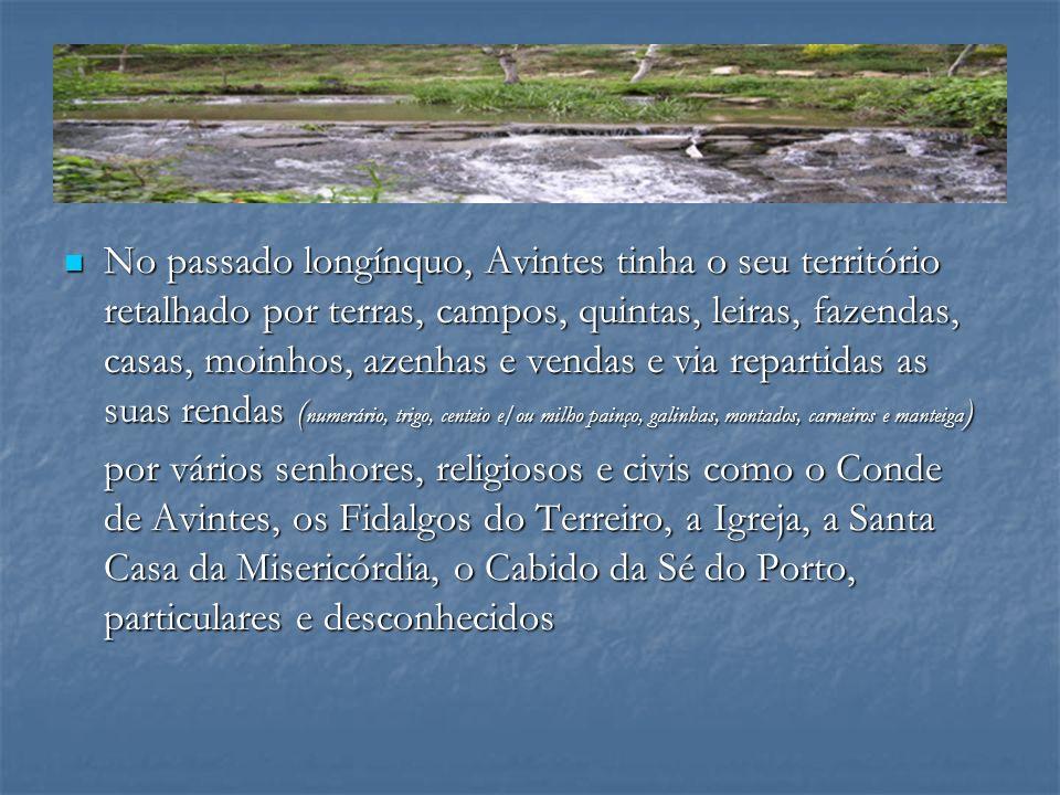 No passado longínquo, Avintes tinha o seu território retalhado por terras, campos, quintas, leiras, fazendas, casas, moinhos, azenhas e vendas e via r