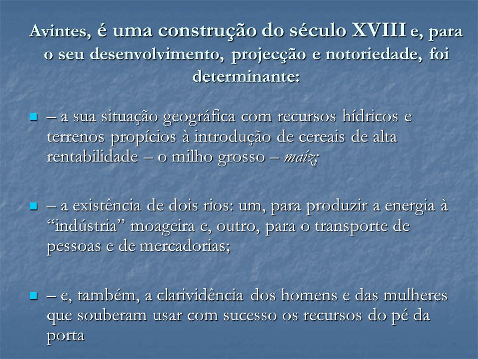 Avintes é uma filha do milho maíz A introdução do milho maíz e comercialização dos seus produtos panificáveis na Cidade do Porto, transformou radicalmente Avintes em todas as suas dimensões.