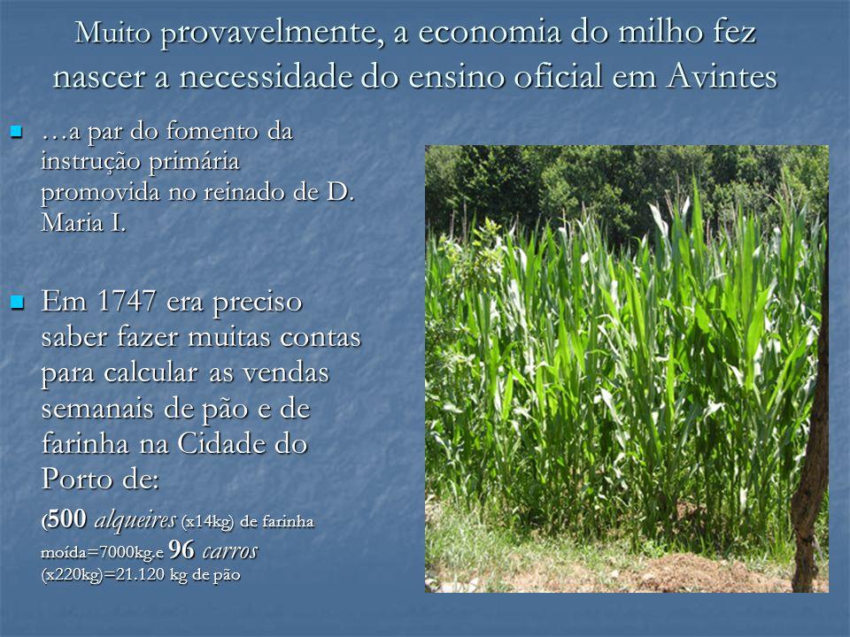 Muito p rovavelmente, a economia do milho fez nascer a necessidade do ensino oficial em Avintes …a par do fomento da instrução primária promovida no r