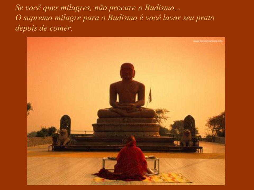 Entretanto, ao praticar os ensinamentos do Buda, dentre inúmeras coisas inexplicáveis, você perceberá que...