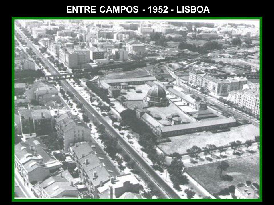 ENTRE CAMPOS - 1952 - LISBOA