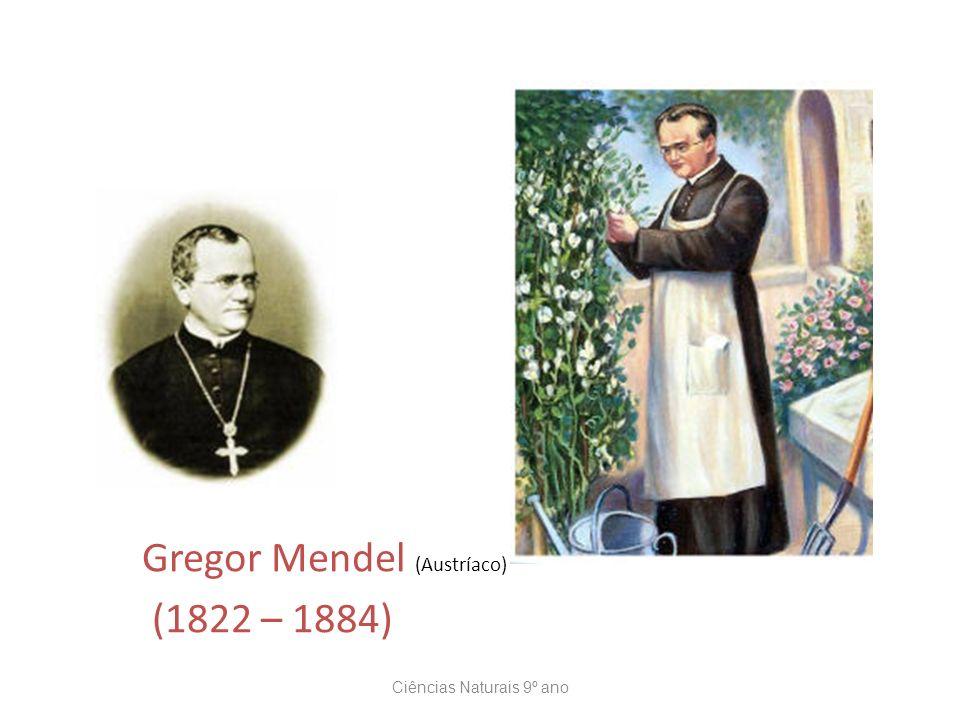 Gregor Mendel (Austríaco) (1822 – 1884) Ciências Naturais 9º ano