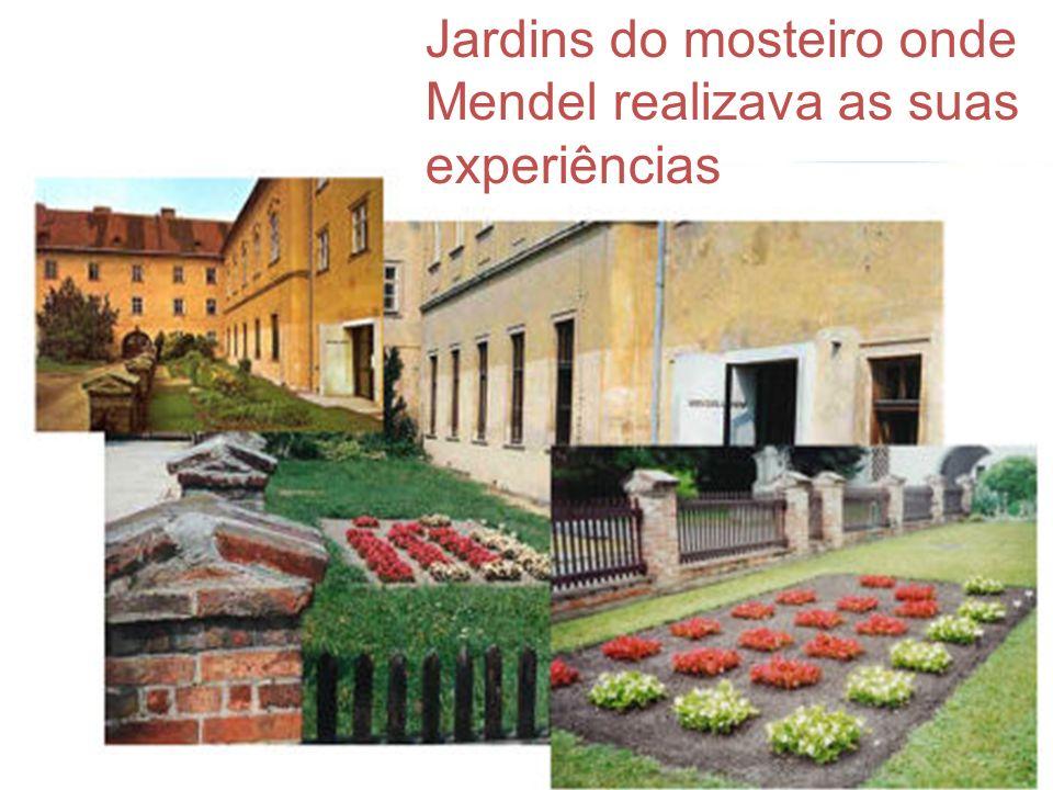 Jardins do mosteiro onde Mendel realizava as suas experiências