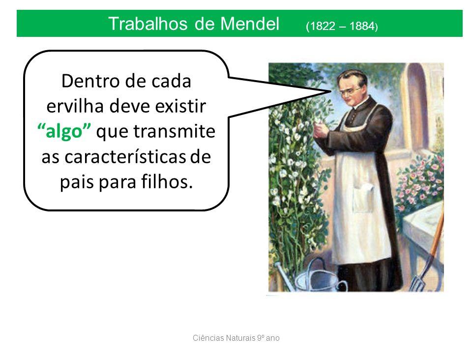 Ciências Naturais 9º ano Trabalhos de Mendel (1822 – 1884 ) Dentro de cada ervilha deve existir algo que transmite as características de pais para filhos.