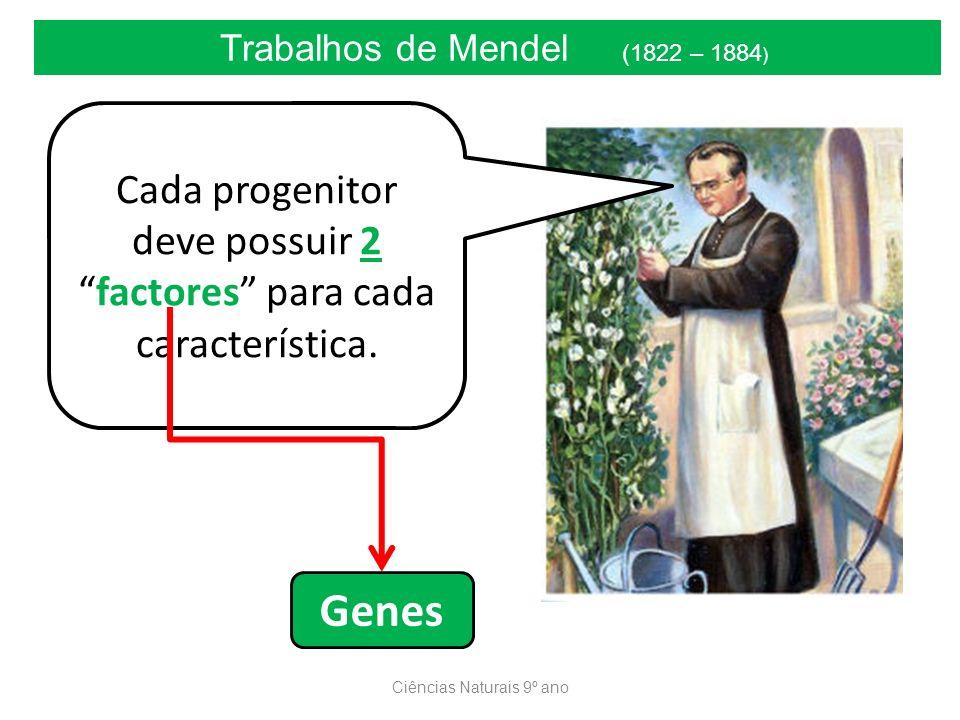 Ciências Naturais 9º ano Trabalhos de Mendel (1822 – 1884 ) Cada progenitor deve possuir 2factores para cada característica. Genes