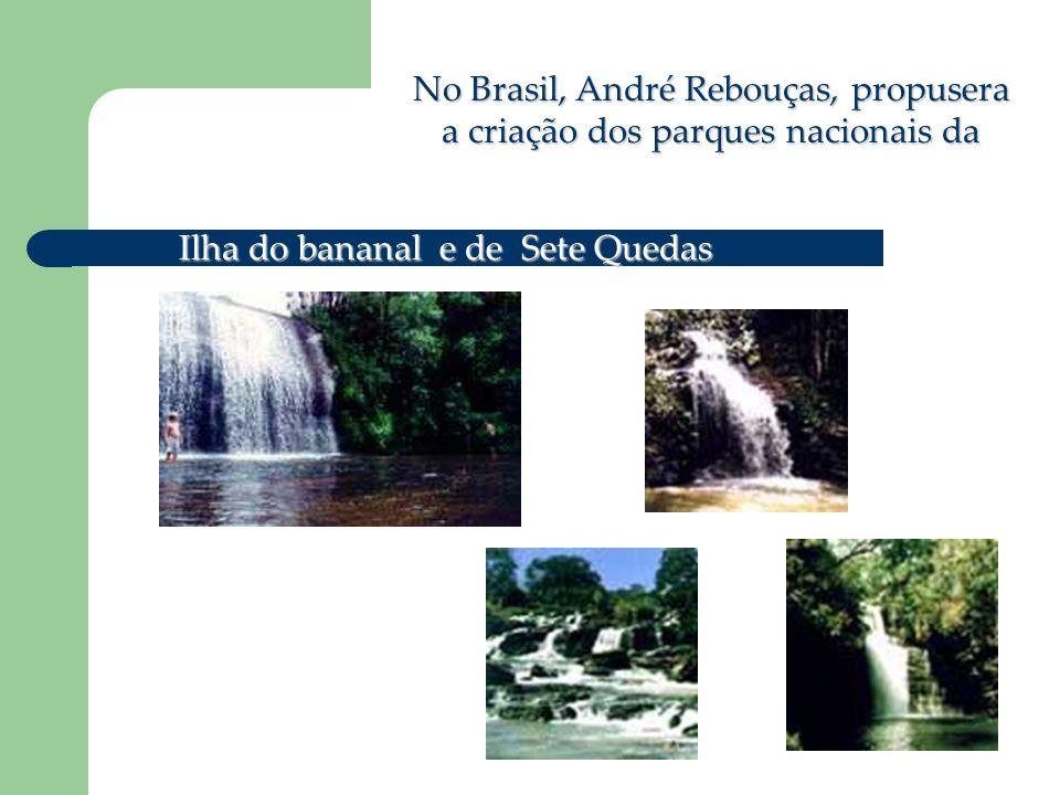 No Brasil, André Rebouças, propusera a criação dos parques nacionais da Ilha do bananal e de Sete Quedas