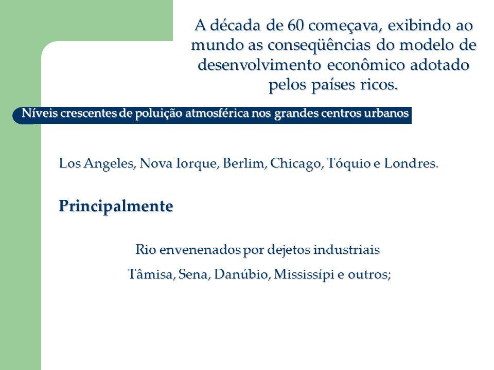 A década de 60 começava, exibindo ao mundo as conseqüências do modelo de desenvolvimento econômico adotado pelos países ricos.