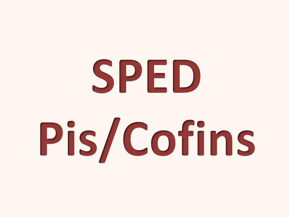 1 3 EFD-Pis/Cofins na Prática Grandes realizações não são feitas por impulso, mas por uma soma de pequenas realizações.