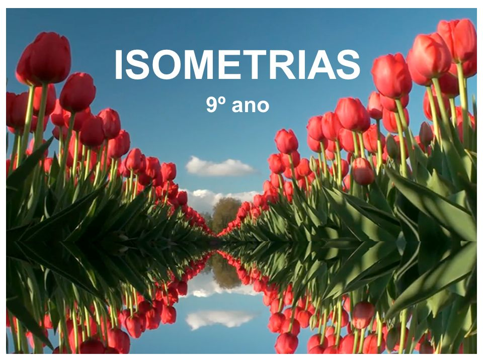 ISOMETRIAS 9º ano