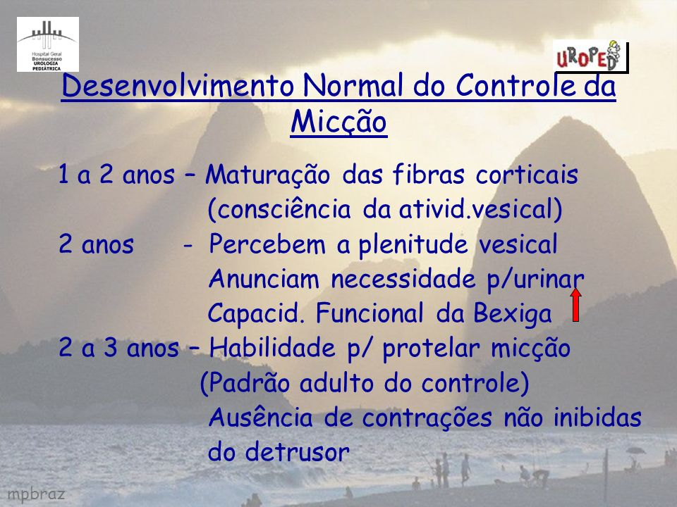 mpbraz Desenvolvimento Normal do Controle da Micção 1 a 2 anos – Maturação das fibras corticais (consciência da ativid.vesical) 2 anos - Percebem a pl