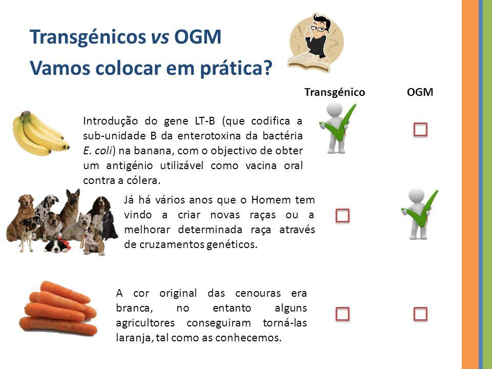 Transgénicos vs OGM Vamos colocar em prática.