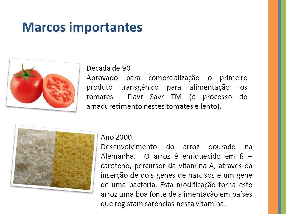 Ano 2000 Desenvolvimento do arroz dourado na Alemanha.