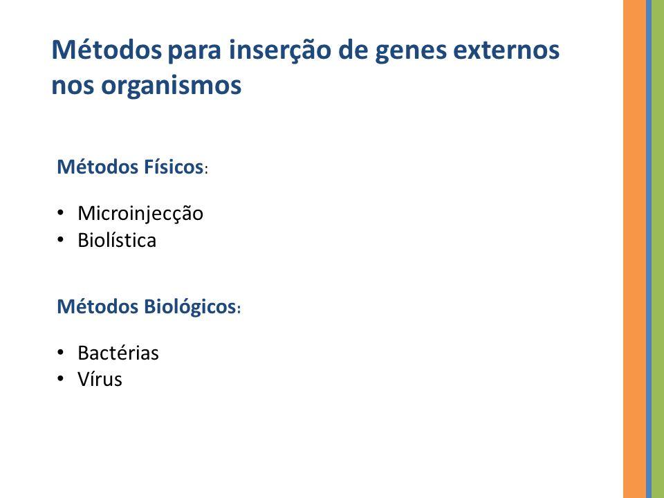 Métodos para inserção de genes externos nos organismos Métodos Físicos : Microinjecção Biolística Métodos Biológicos : Bactérias Vírus