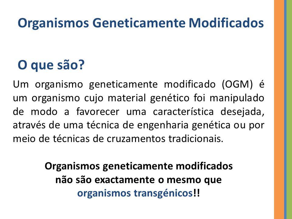 Organismos Geneticamente Modificados Organismos Transgénicos Um transgénico é sempre um OGM, mas um OGM não é obrigatoriamente um transgénico.