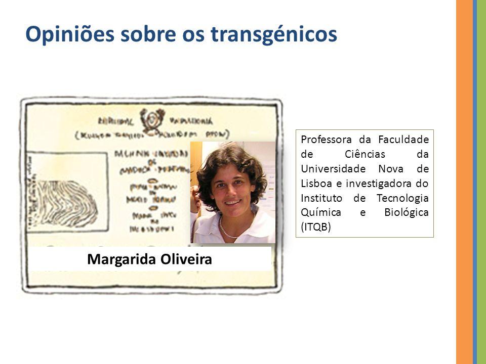 Opiniões sobre os transgénicos Professora da Faculdade de Ciências da Universidade Nova de Lisboa e investigadora do Instituto de Tecnologia Química e Biológica (ITQB) Margarida Oliveira