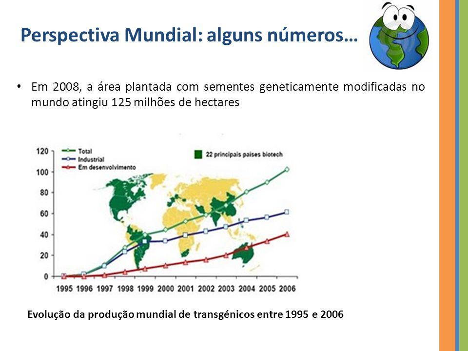 Perspectiva Mundial: alguns números… Em 2008, a área plantada com sementes geneticamente modificadas no mundo atingiu 125 milhões de hectares Evolução da produção mundial de transgénicos entre 1995 e 2006