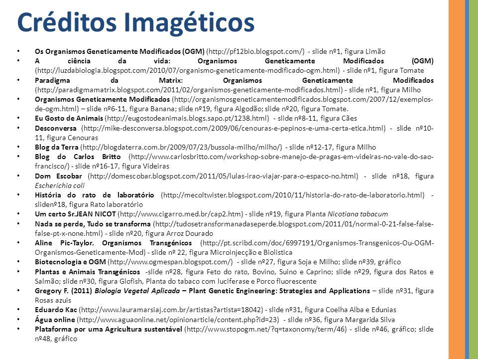 Créditos Imagéticos Os Organismos Geneticamente Modificados (OGM) (http://pf12bio.blogspot.com/) - slide nº1, figura Limão A ciência da vida: Organismos Geneticamente Modificados (OGM) (http://luzdabiologia.blogspot.com/2010/07/organismo-geneticamente-modificado-ogm.html) - slide nº1, figura Tomate Paradigma da Matrix: Organismos Geneticamente Modificados (http://paradigmamatrix.blogspot.com/2011/02/organismos-geneticamente-modificados.html) - slide nº1, figura Milho Organismos Geneticamente Modificados (http://organismosgeneticamentemodificados.blogspot.com/2007/12/exemplos- de-ogm.html) – slide nº6-11, figura Banana; slide nº19, figura Algodão; slide nº20, figura Tomate.