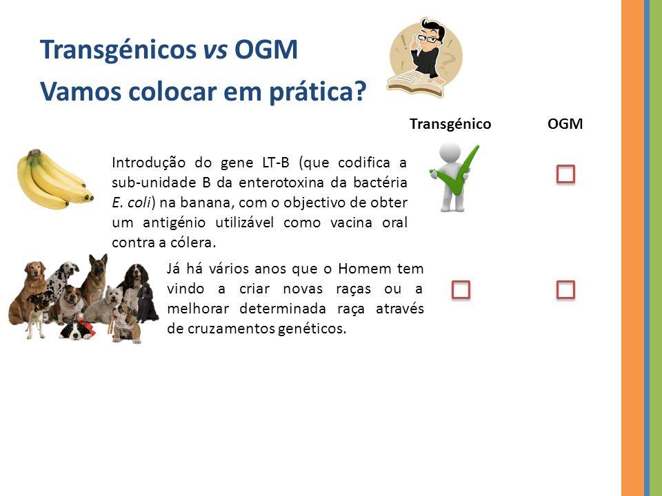 Referências Bibliográficas Llaguno C.(2001). Genetically Modified Organisms.